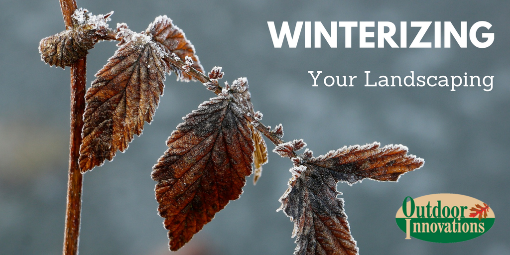 Winterize your Landscaping in the Quad Cities
